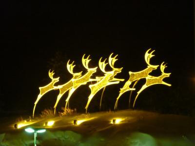 寒がりが行く、フィンランド!② ~オーロラが観たいっ!~ (サーリセリカ)