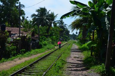 家族でスリランカ旅行-④コロンボ散策
