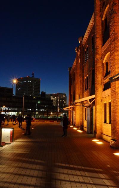 【神奈川県(横浜)】 幻想的な夜の横浜ベイエリア散歩♪