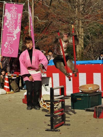 香嵐渓-1 大道芸=猿まわし実演=楽しく見物し  ☆大跳躍わざに拍手喝采