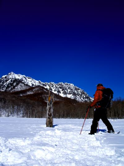 ~雪歩き~ 僕の中の御神木に会いにスノーシューで戸隠鏡池へ