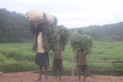 ルワンダ共和国 【(国境)ガトゥナ~キガリ~ブタレ】