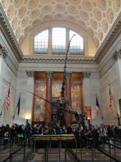 2012年10月 ニューヨーク旅行記7日目 自然史博物館~スパイダーマン