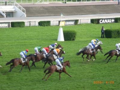 パリで競馬 1 オトゥイユ競馬場 (障害競馬)