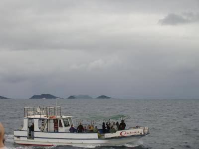 沖縄でのホエールウォッチング