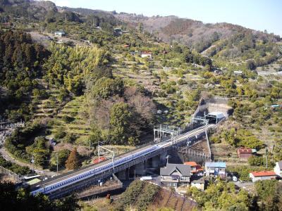 ●早川・片浦ウォーキングトレイル