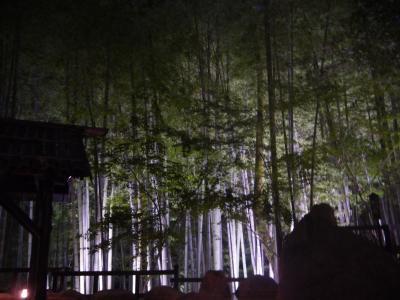 白川温泉にある竹つくしの宿