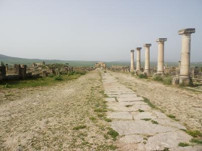 モロッコ2012旅行記 【14】メクネスおよびその周辺1(ヴォルビリス遺跡他)