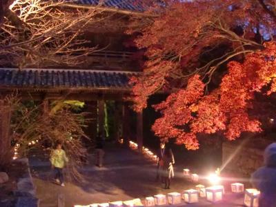 長州・夏みかんの国~2012山口旅行