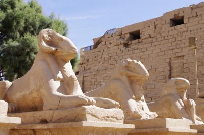 2013年 神秘のエジプト・ルクソール東岸へ