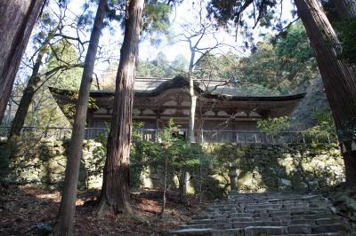 滋賀近江八幡・湖東三山からいつもの京都へ(二日目)~紅葉シーズンは終盤でも、風格の漂う寺々には滋賀の本質を見たような気持ちになりました~