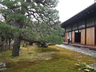 京の冬の旅、相国寺慈照院