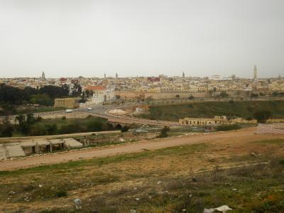 モロッコ2012旅行記 【16】メクネスおよびその周辺3(メクネス旧市街)