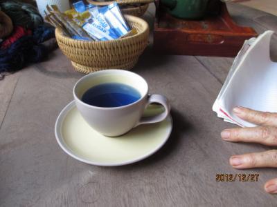 ラオス北部紀行(18)南国の花園と南国のお茶「アンチャン」。