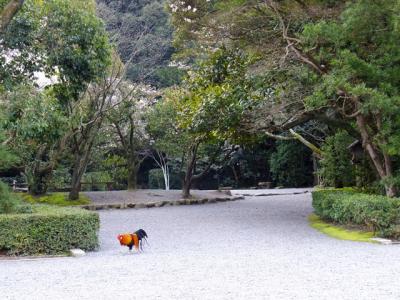 (編集中)会社員の土日遊び:三重・名古屋旅。 ムーンライトながらで行く伊勢志摩・名古屋