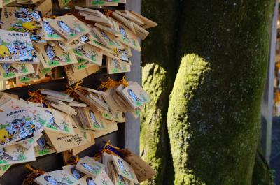 通りすがりの御朱印 武蔵総社 大國魂神社 & 谷保天満宮の梅
