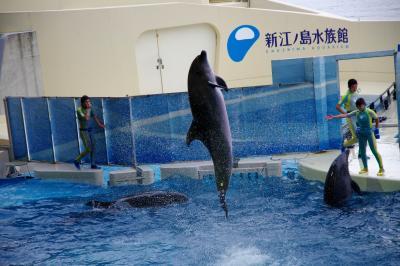 ♪ 江ノ島が見えてきた~♪ 2012 GWにシラスを食べ、藤沢で酔う!