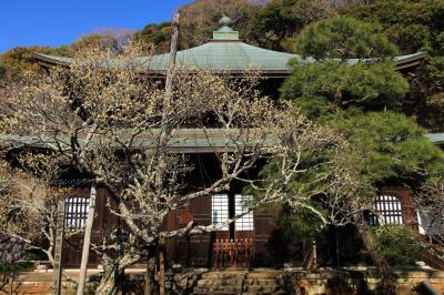 鎌倉・梅観て歩き:「瑞泉寺」