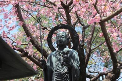 2012年 4月 花まつりの「海寿山 満福寺 密蔵院」は桜で満開でした