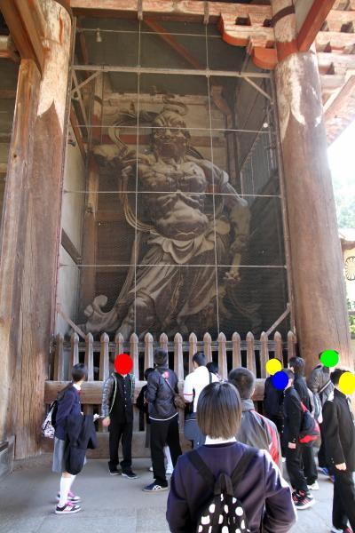 Solitary Journey [1172] 春の車旅、鹿さんコンニチは~ \(^_^ ) 想い出深い東大寺~片岡梅林<奈良公園散策記>奈良県奈良市