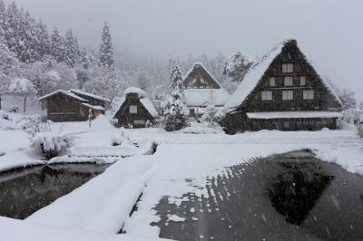 雪の合掌造り集落巡りと古都・飛騨高山の旅