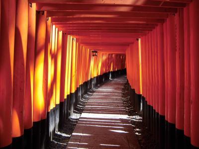 2013・3月 京都に行ってきました☆ 伏見稲荷~東寺