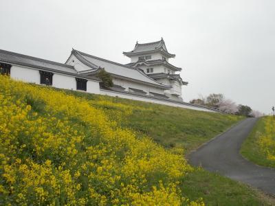 春の関宿城博物館