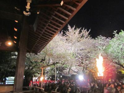 なんとか夜桜が見られた2度目の夜桜能──2度目の靖国神社も夜の能舞台観劇合間に