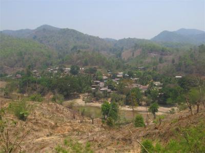 2013年 北タイオフロード その5 「ココヤシの谷」