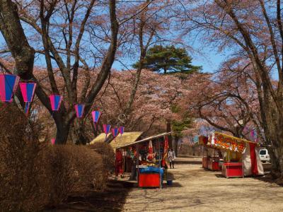 青春18切符 栃木県黒磯へ−2 満開にはまだ早い 黒磯公園