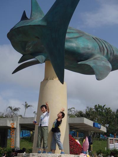 ☆LCC初搭乗☆ジェットスターで沖縄に行きました(*´∀`*)。2日目。<美ら海水族館&パイナップル>