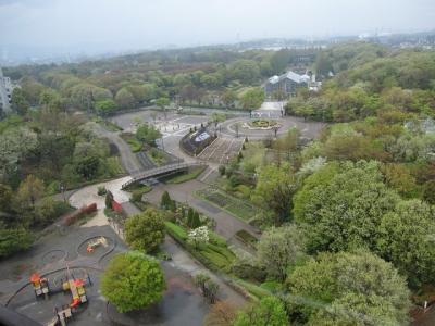 古淵駅から「木もれびの森(相模原中央緑地)」・「神奈川県立相模原公園」