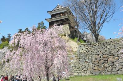 信州さくらまつりめぐり「上田城・臥龍公園・高島城」