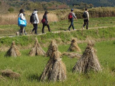 奈良も5度目なら~♪ (2)山の辺の道