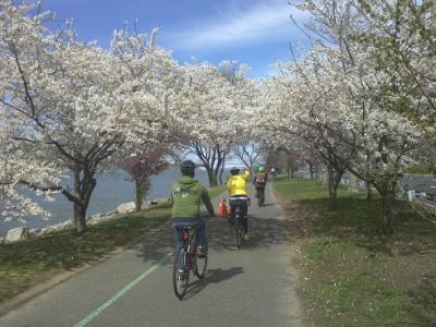 マンハッタン島一周サイクリング