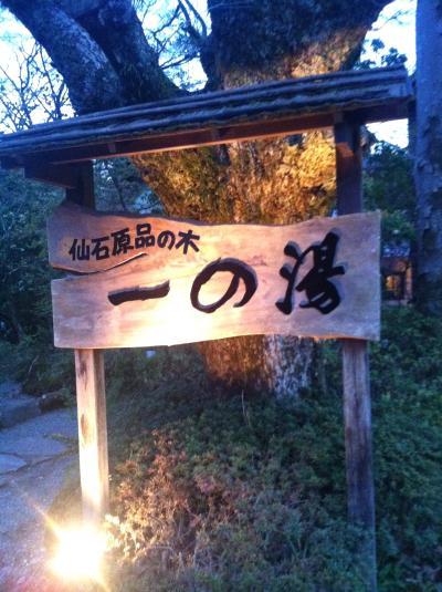 箱根  品の木一の湯