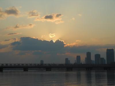 平成25年 淀川河川敷での釣りと花々