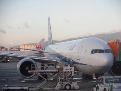 ANAプレミア・クラス vs JALファースト・クラス国内線乗り比べ [比較搭乗記]