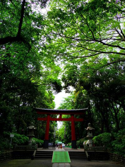 大宮八幡宮+α(祖師谷公園)