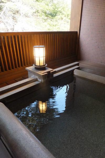 高原の温泉でのんびり & 諏訪 高島城でお花見 (1) 【 蓼科温泉 たてしな薫風 】