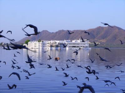 インド北西部再訪15★ウダイプルⅡ湖岸を散歩~列車での諸々