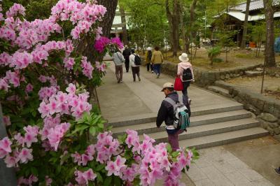 JRさわやかウォーキング「興津宿から由比宿へ薩埵峠を越えて」