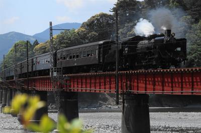 大井川鉄道 SLを見る 初見