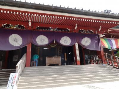 ちょこっとお花見、比叡山延暦寺へ~
