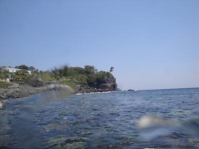 伊豆海洋公園に行きました