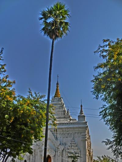 ミャンマーを中心にちょこっとタイも旅日記2012(12)ピンウールィン→マンダレイ(2度目)二日目