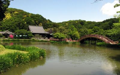 金沢文庫、称名寺 を訪ねて