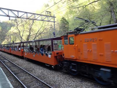 黒部峡谷をトロッコ電車に乗って散策する