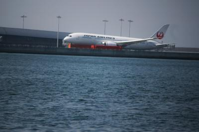 海面すれすれを飛ぶ飛行機を見られるところ、、、で姫釣り♪