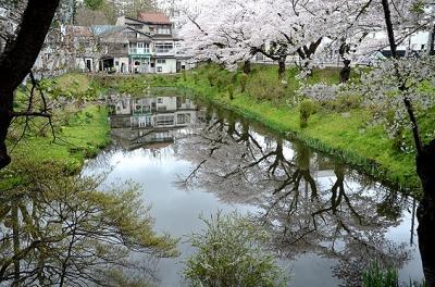 ★盛岡の桜と、鬼の手形伝説のある三ツ石神社